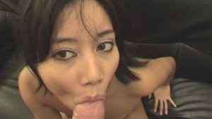 The Asian Connection - Java Productions