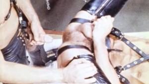 Hot Vintage Sling Fuck - LOG JAMMIN (1980)